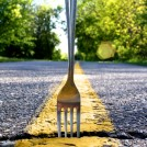 You come to a Fork in the Road
