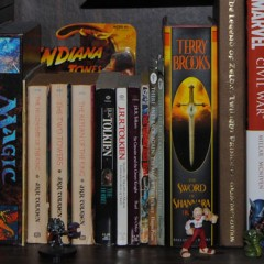 Geek Space The Shelf of Inspiration