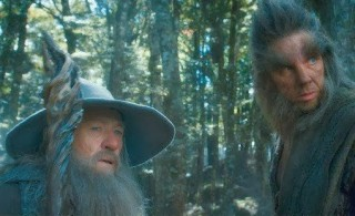 Gandalf and the Party take Refuge in the House of Beorn