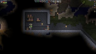 Starbound Underground Frog Shop