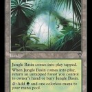 Jungle Basin from Visions