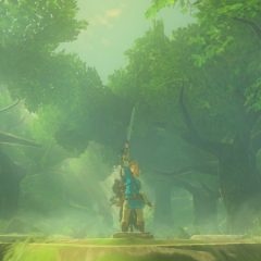 Legend of Zelda Breath of the Wind