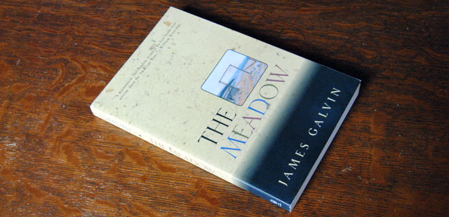 Reading The Meadow 20 years after college adds needed perspective