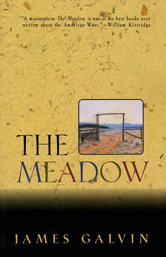 The Meadow Book Cover